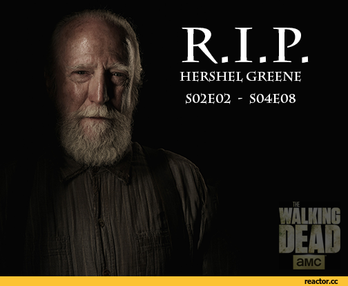 hershel-the-walking-dead-dead-tv-972418