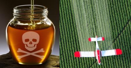 honey-glyphosate-fi