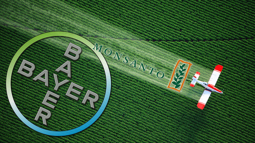 bayer-monsanto marijuana