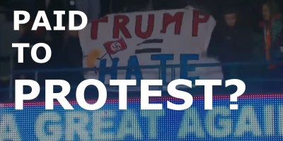 paid to protest